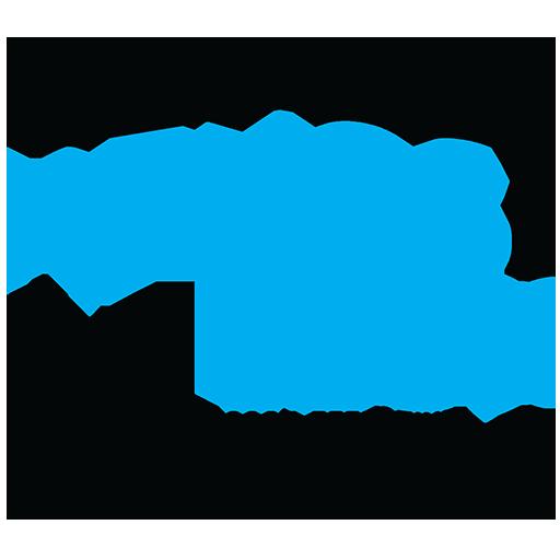 Renos 4 Less